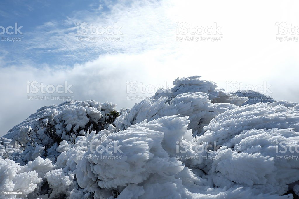 The winter mountain rime stock photo