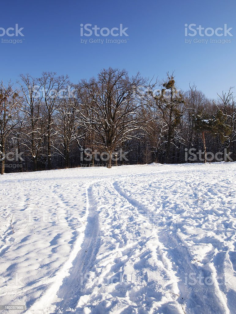 the winter road royalty-free stock photo