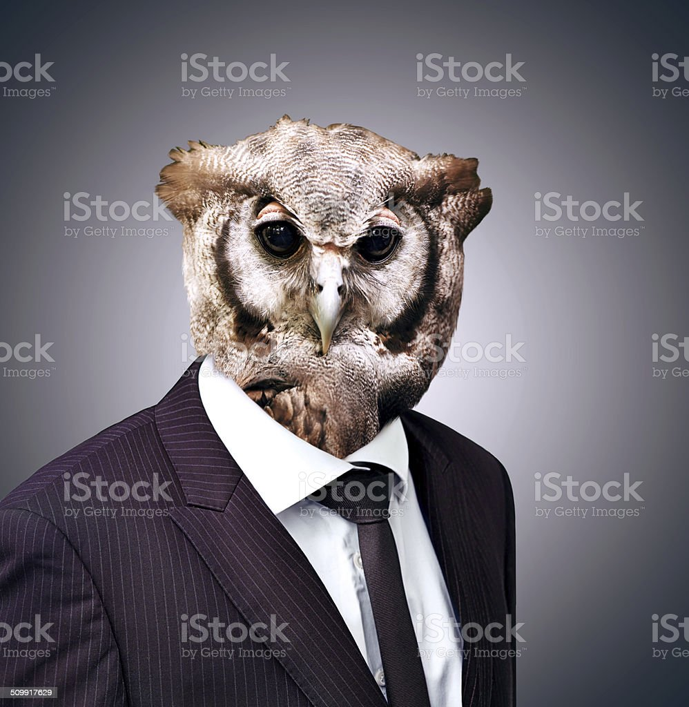 The wise owl knows what's best for business stock photo