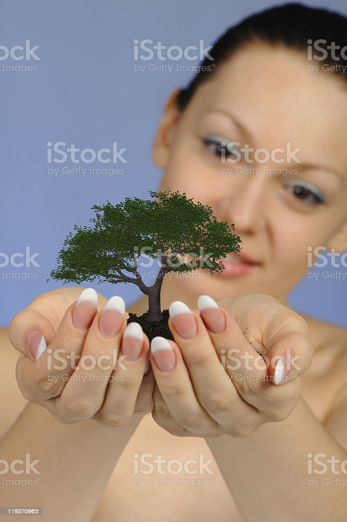 The woman holds in hands soil with a tree royalty-free stock photo