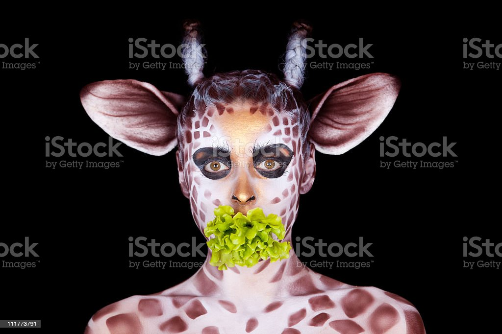 The woman in an image of  giraffe eats salad leaf's royalty-free stock photo