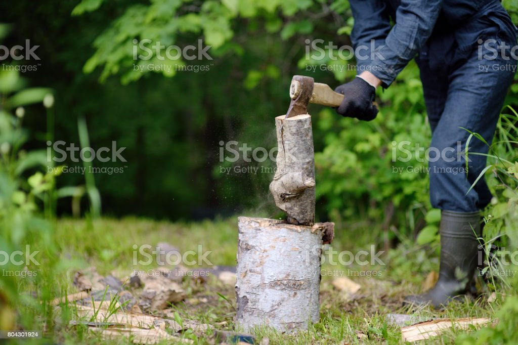 The woodcutter cuts firewood in the wood stock photo