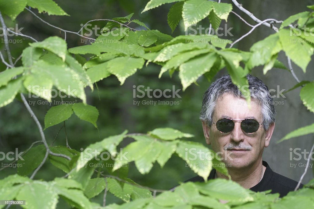 The woodsman stock photo