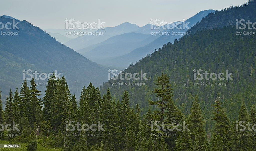Early Morning Fog in the Mountains stock photo