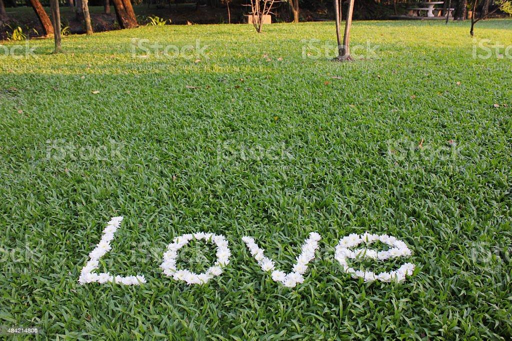 Das Wort Liebe aus daisy Blumen Lizenzfreies stock-foto
