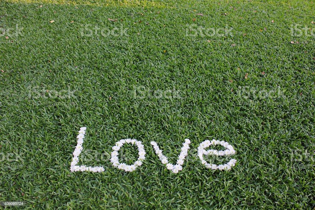 """Das Wort """"Liebe"""" aus Gänseblümchen Blumen Lizenzfreies stock-foto"""