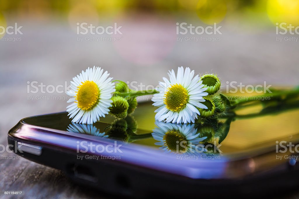 The words you need stock photo