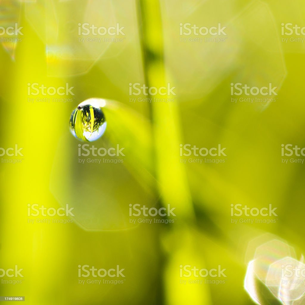 The world in drop royalty-free stock photo