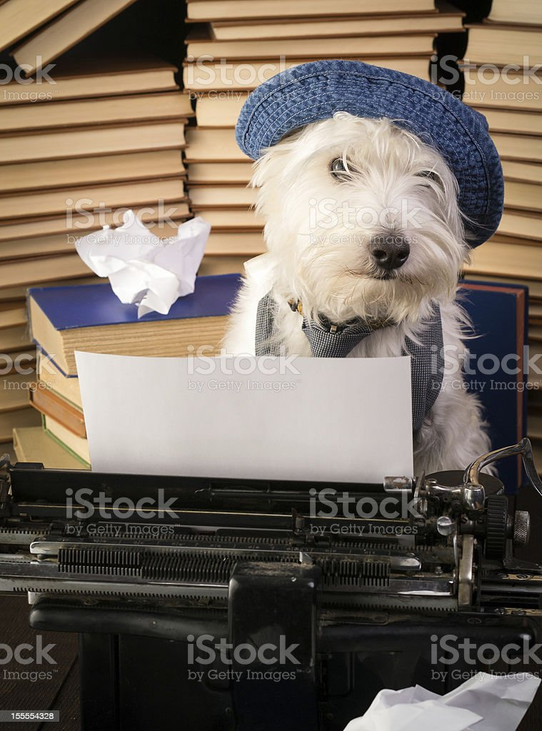 The Writer stock photo