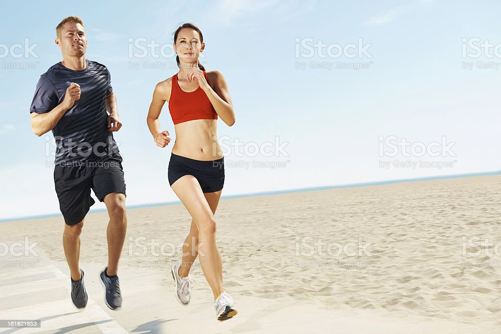 Their hard work keeps them looking this great! royalty-free stock photo