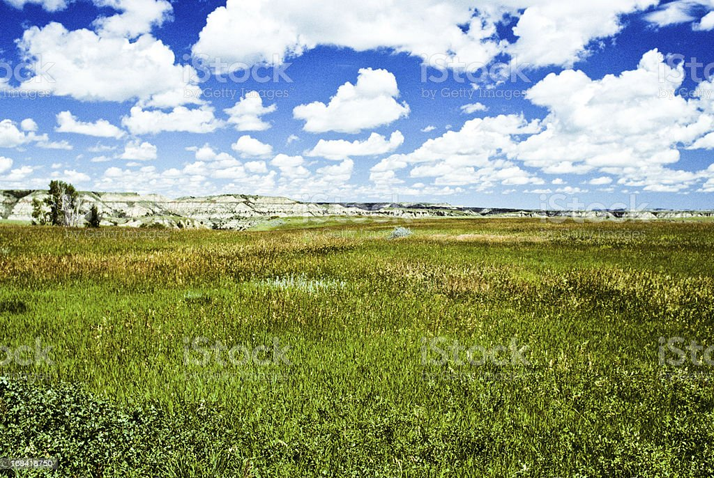 Grassy Meadow and Cloud Formation royalty-free stock photo