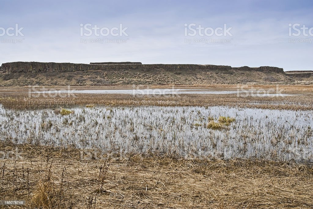 Pothole Marsh and Distant Mesa royalty-free stock photo