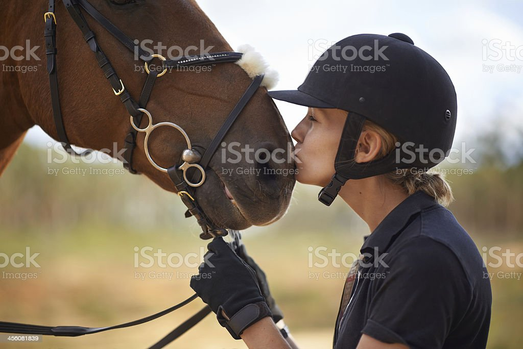 There is a bond between horse and rider stock photo