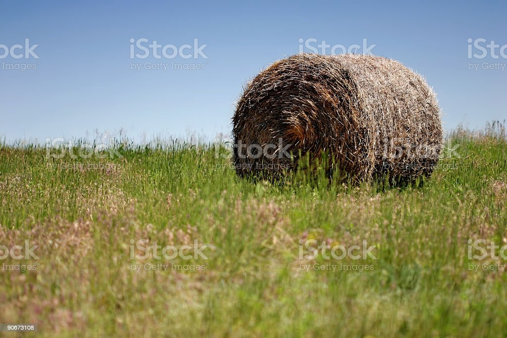hay bale royalty-free stock photo
