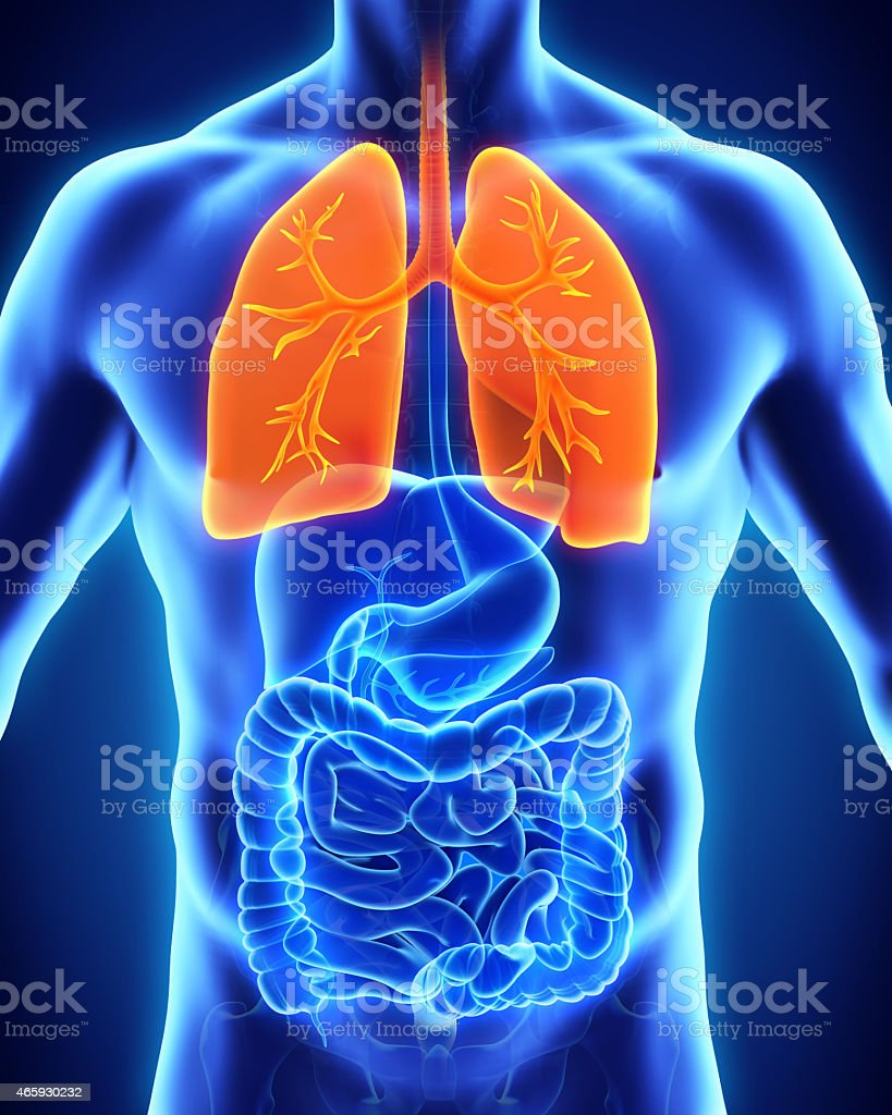 Thermal image of the human respiratory system stock photo