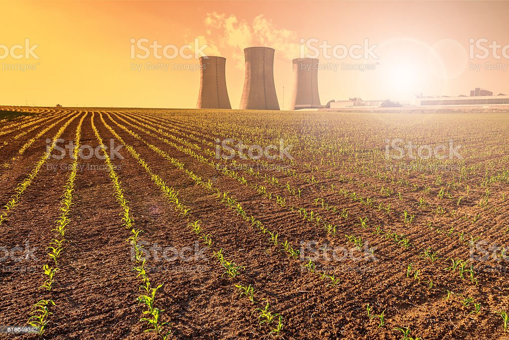 Thermal power plant at sunset, corn field stock photo