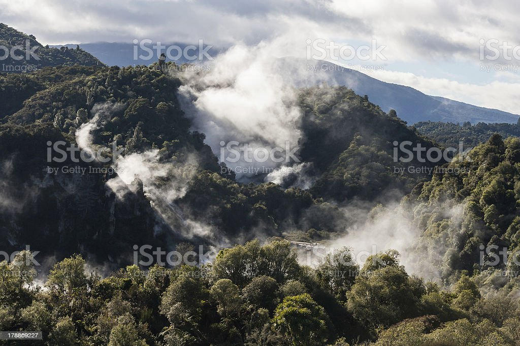 thermal valley in Rotorua stock photo