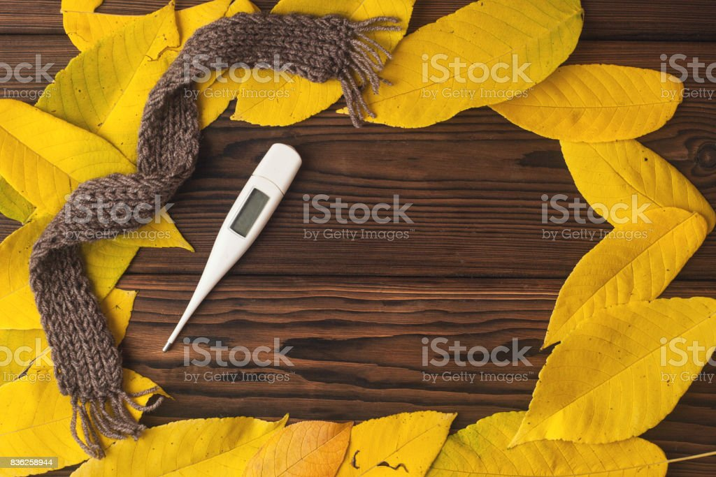 thermometer and autumn leaves on rustic dark wooden background. Top view. Fall and health care. Herbal medicine. stock photo