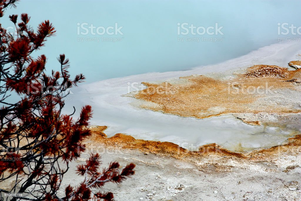 Thermophilic Bacteria at Biscuit Basin Yellowstone national park stock photo