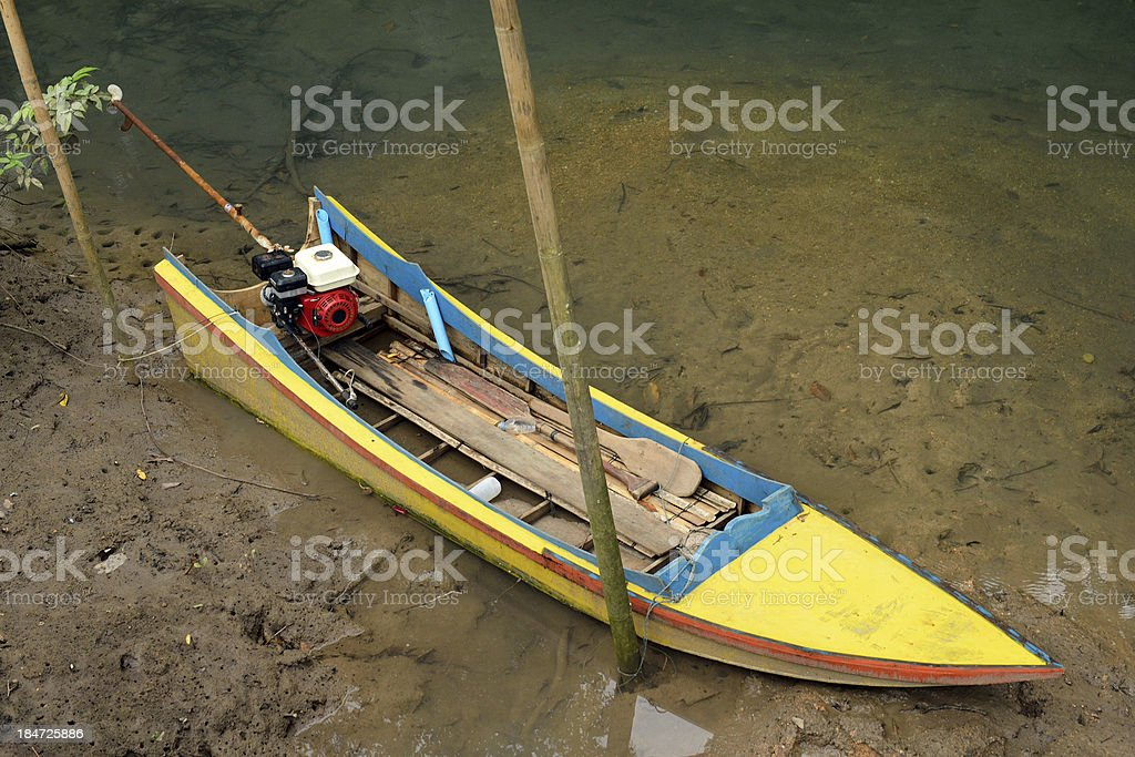 thetraditional boat in mangroves forest, Krabi, Thailand. stock photo