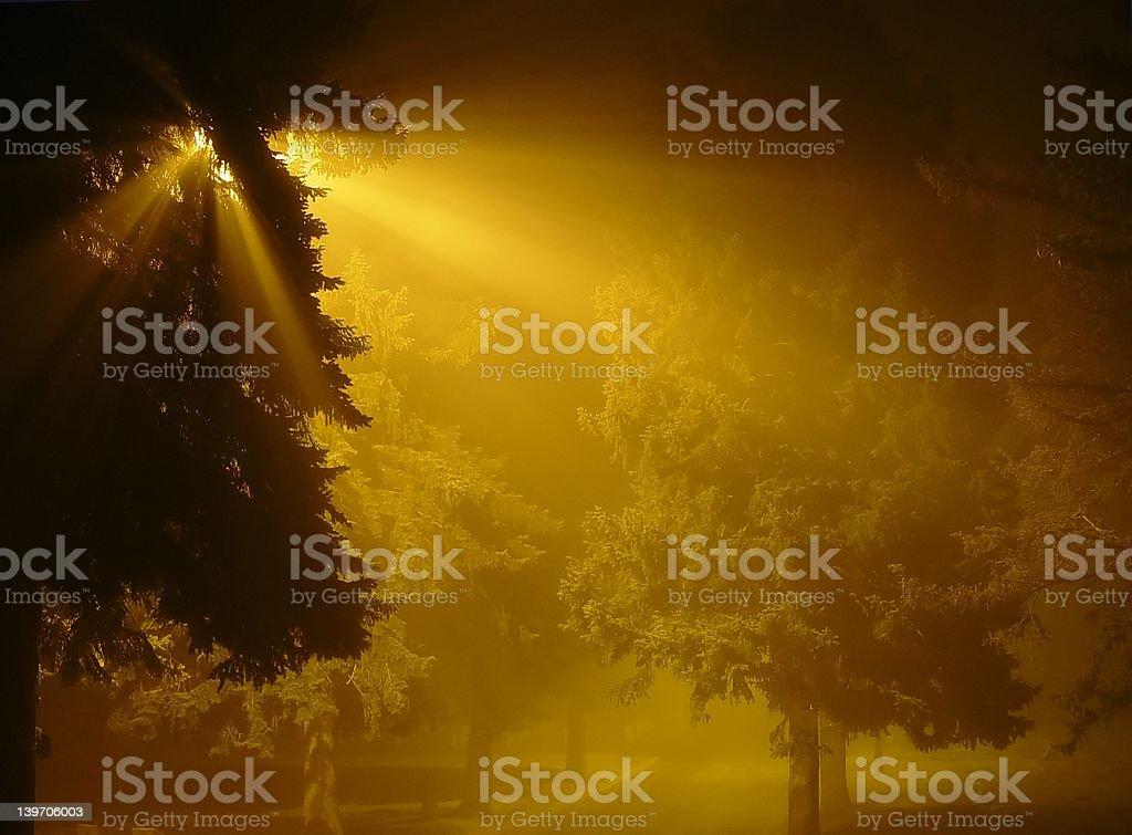 They are coming royalty-free stock photo