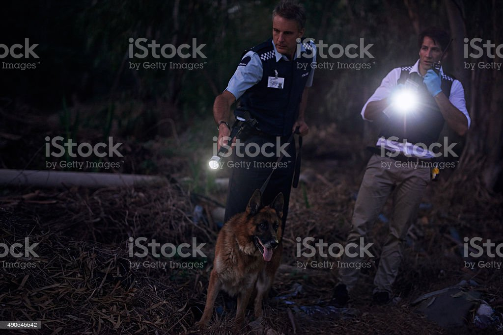 They'll get their man! stock photo