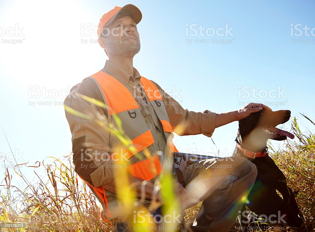 They're an excellent hunting duo royalty-free stock photo