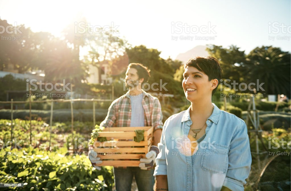 They're in it for the love of farming stock photo