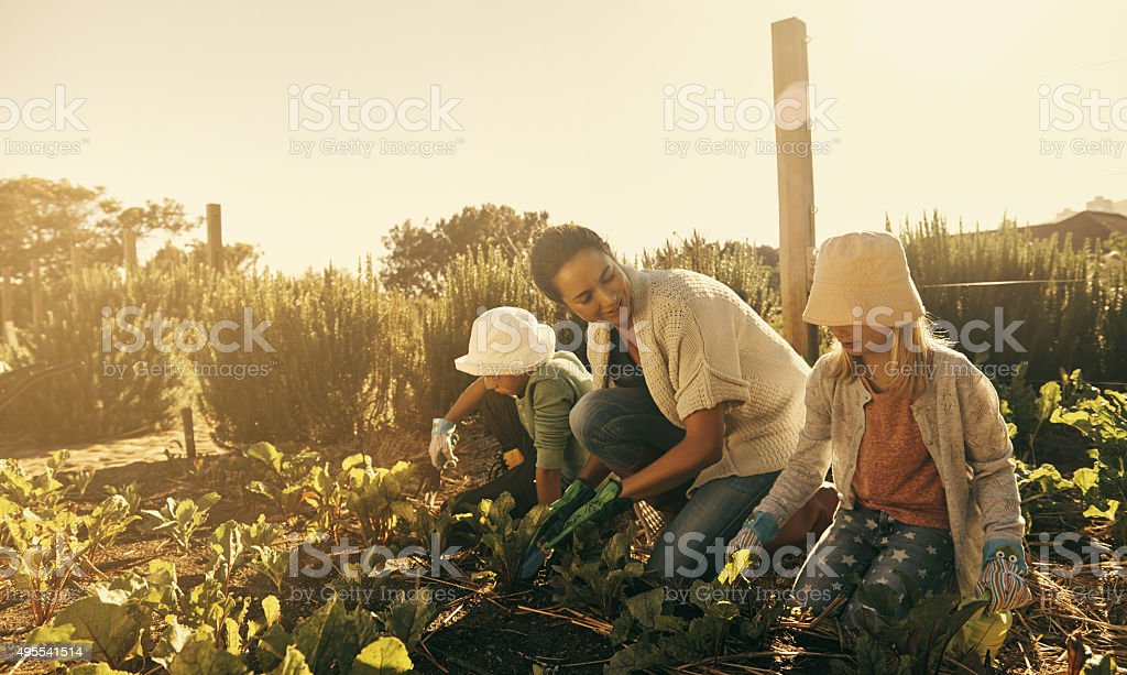 They're naturals at gardening stock photo