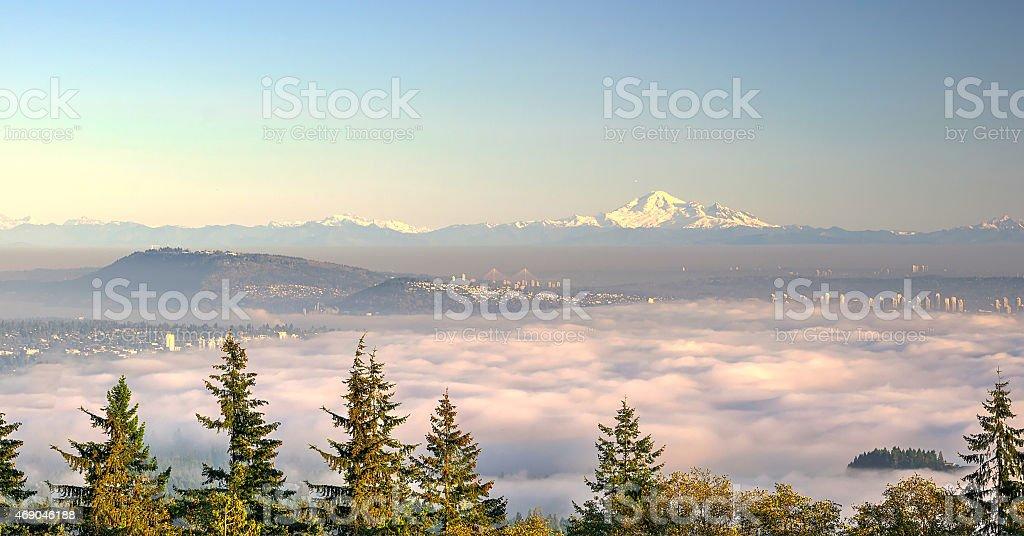 Thick fog stock photo