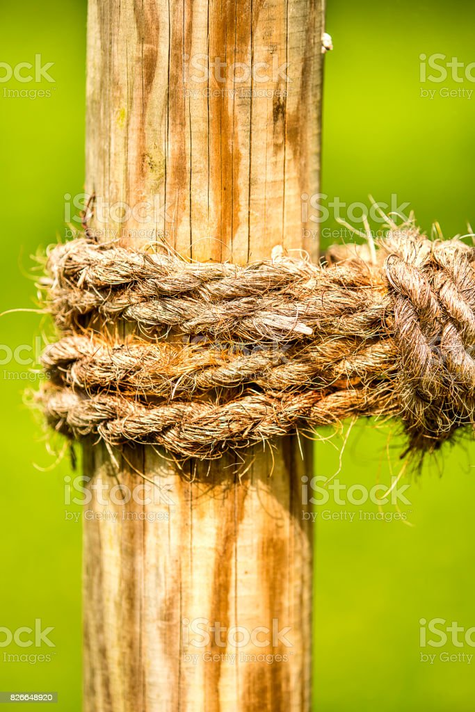 thick rope with green background stock photo