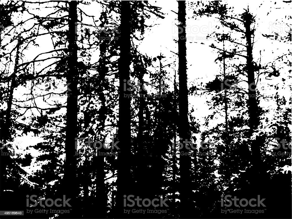 thicket, deep fairy forest silhouette, jungle shadows stock photo