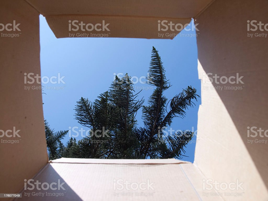 Thinking outside of the Box royalty-free stock photo