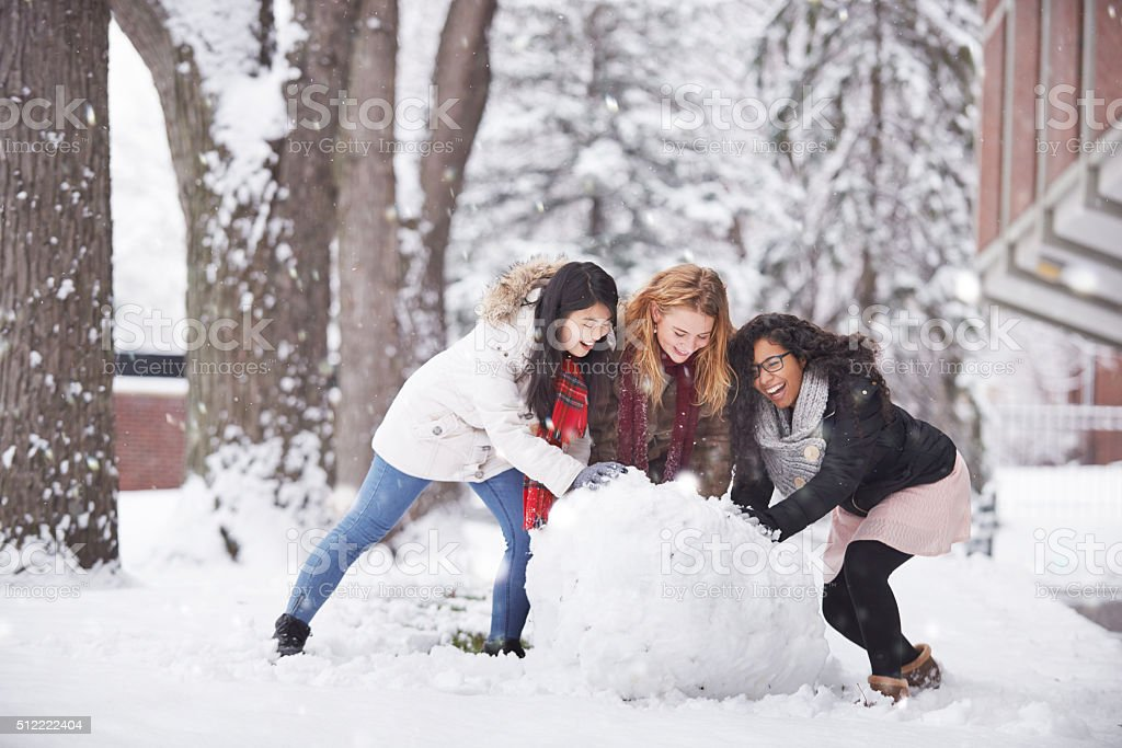This is what winter is all about stock photo