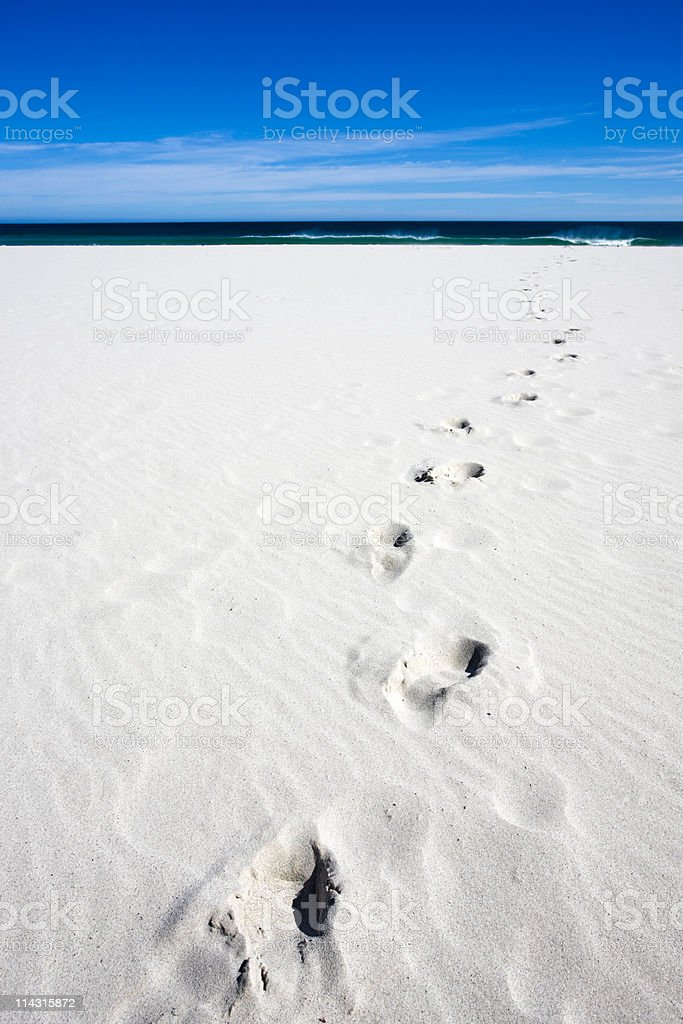 This way to the sea royalty-free stock photo