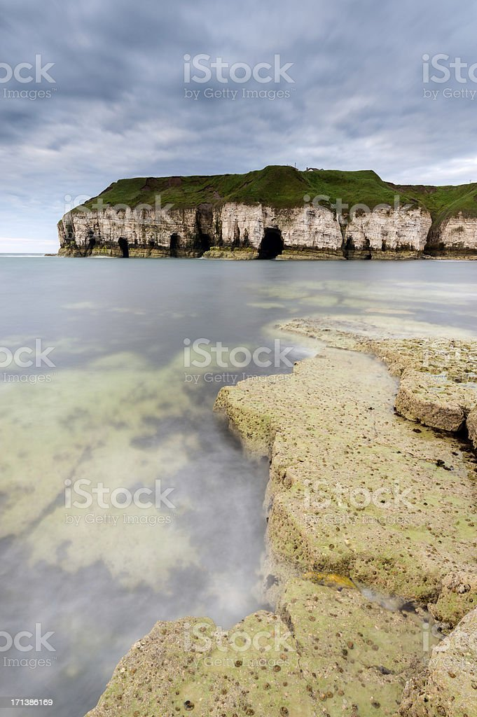 Thornwick Bay, Flamborough Head, Yorkshire stock photo