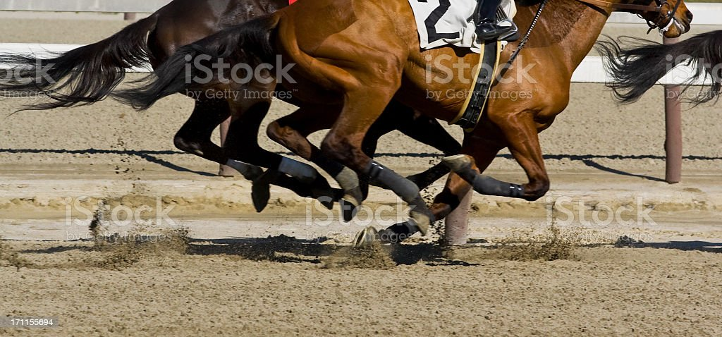 Thoroughbred horse racing - Galloping stock photo