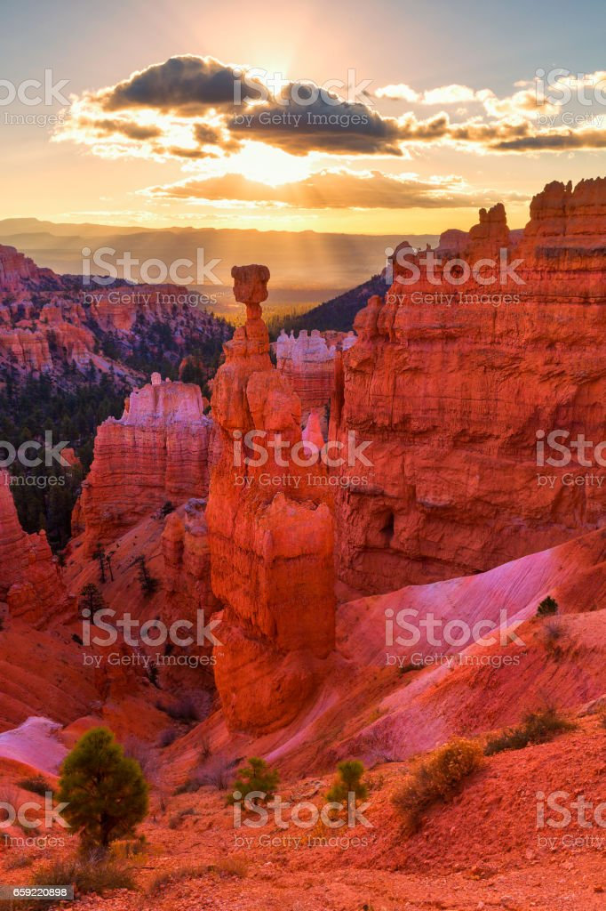 Thor's Hammer in Bryce Canyon National Park in Utah, USA stock photo