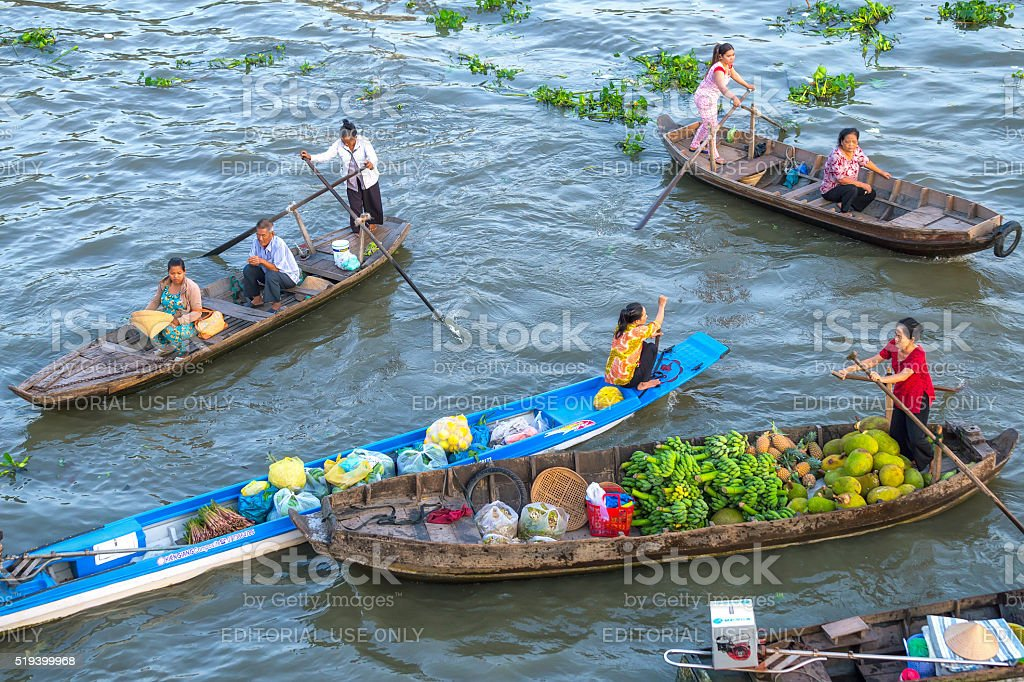 Those rowing reverse sweep on the river stock photo