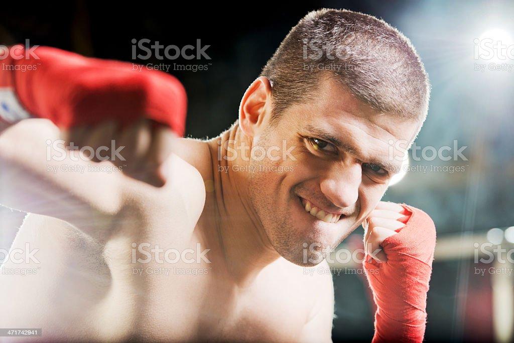 Though boxer exercising. royalty-free stock photo
