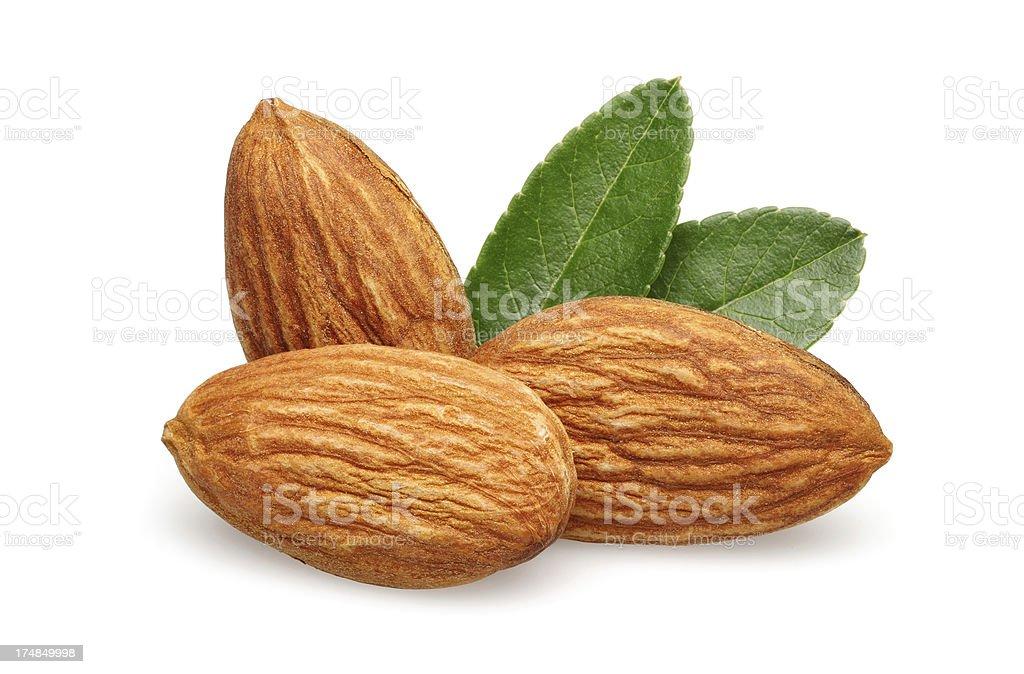 Three Almond royalty-free stock photo