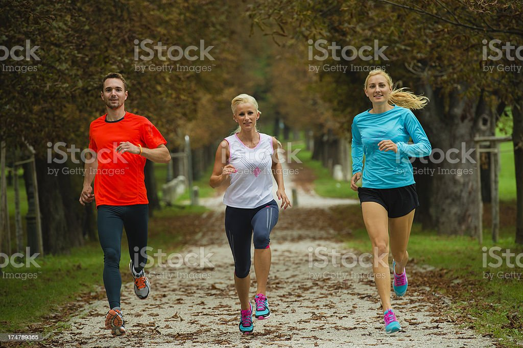 Three athletes jogging in the park royalty-free stock photo