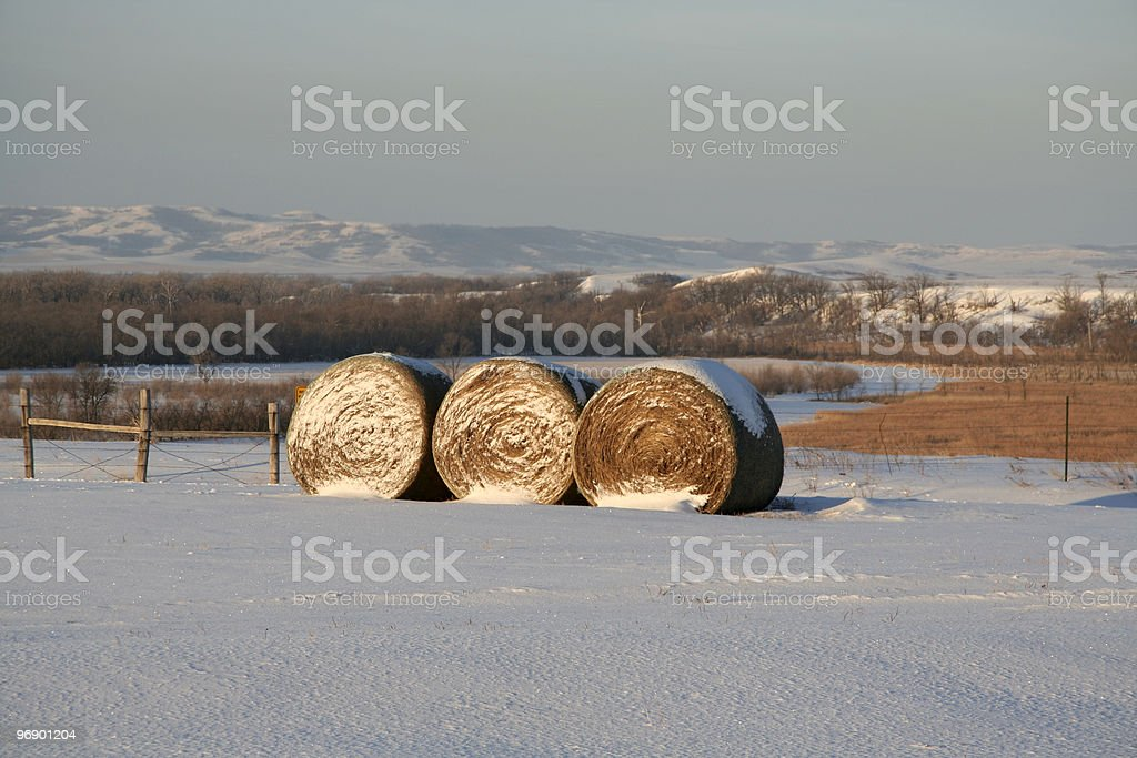 Three Bales royalty-free stock photo