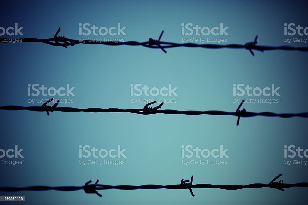 three barbed  wire lines and light blue background stock photo