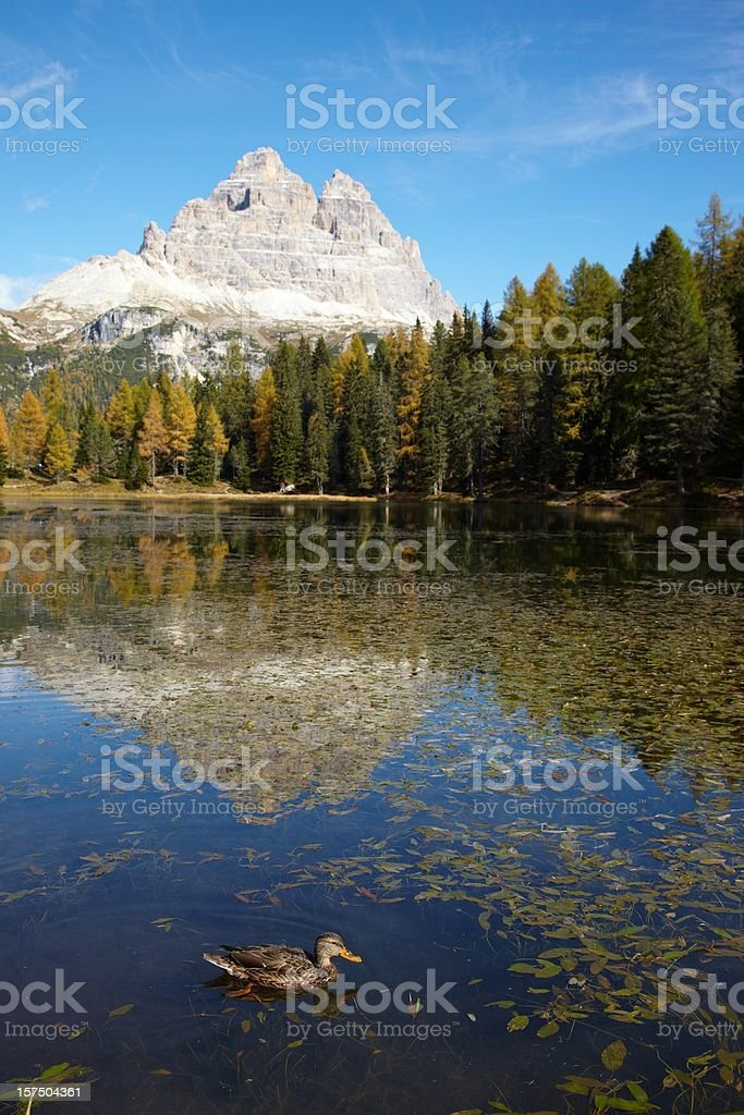 Drei Zinnen mirroring in lake royalty-free stock photo