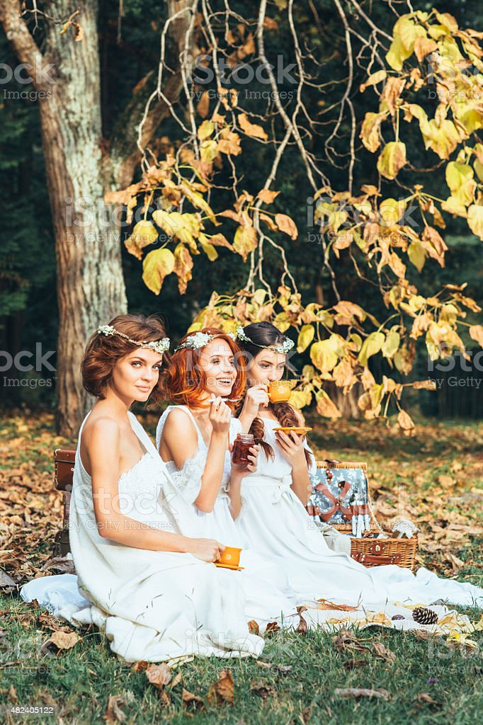 Three beautiful bride on a background of autumn forest stock photo