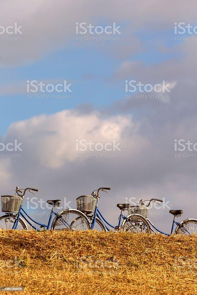 Drei Fahrrad auf dem Hügel (vertikal Lizenzfreies stock-foto