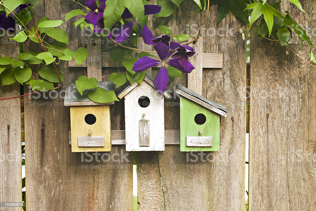 Three birdhouses on old wooden fence with flowers royalty-free stock photo