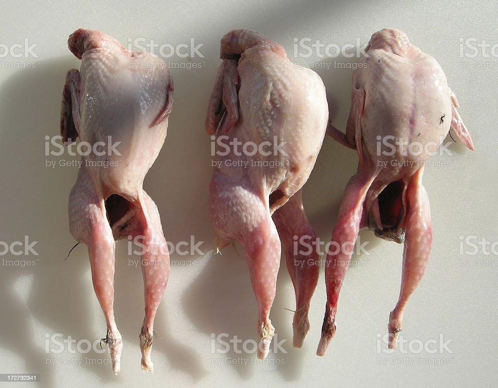 three birds stock photo