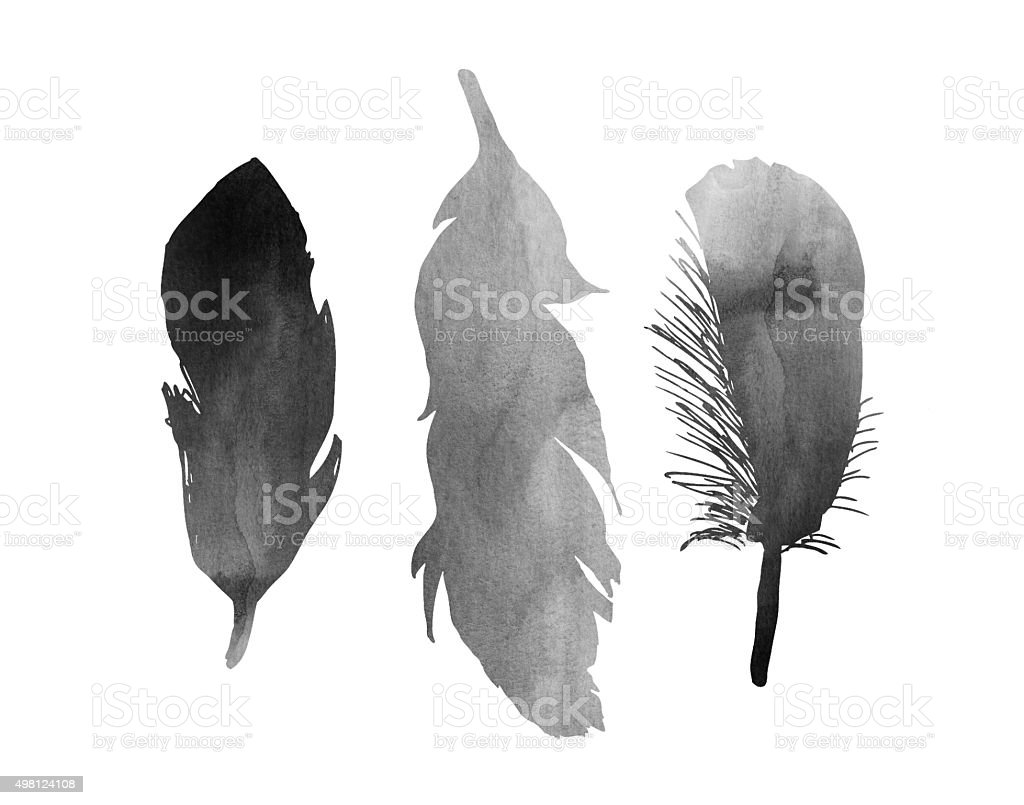 Three Black and White Watercolor Bird Feathers Illustration stock photo